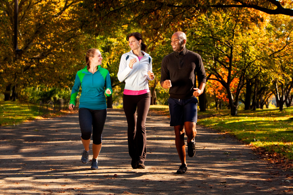 Which Type of Exercise Is Best for the Brain function?