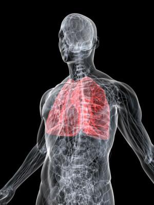 lungsdigital.resises