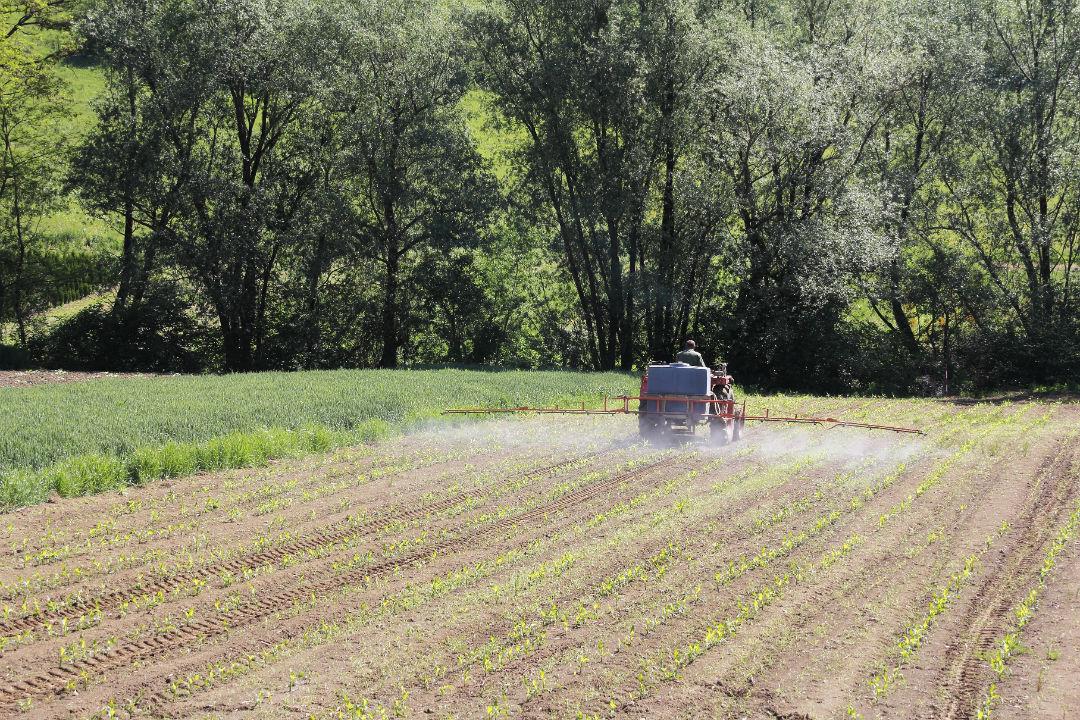 The Frankenstein herbicide – Part 1